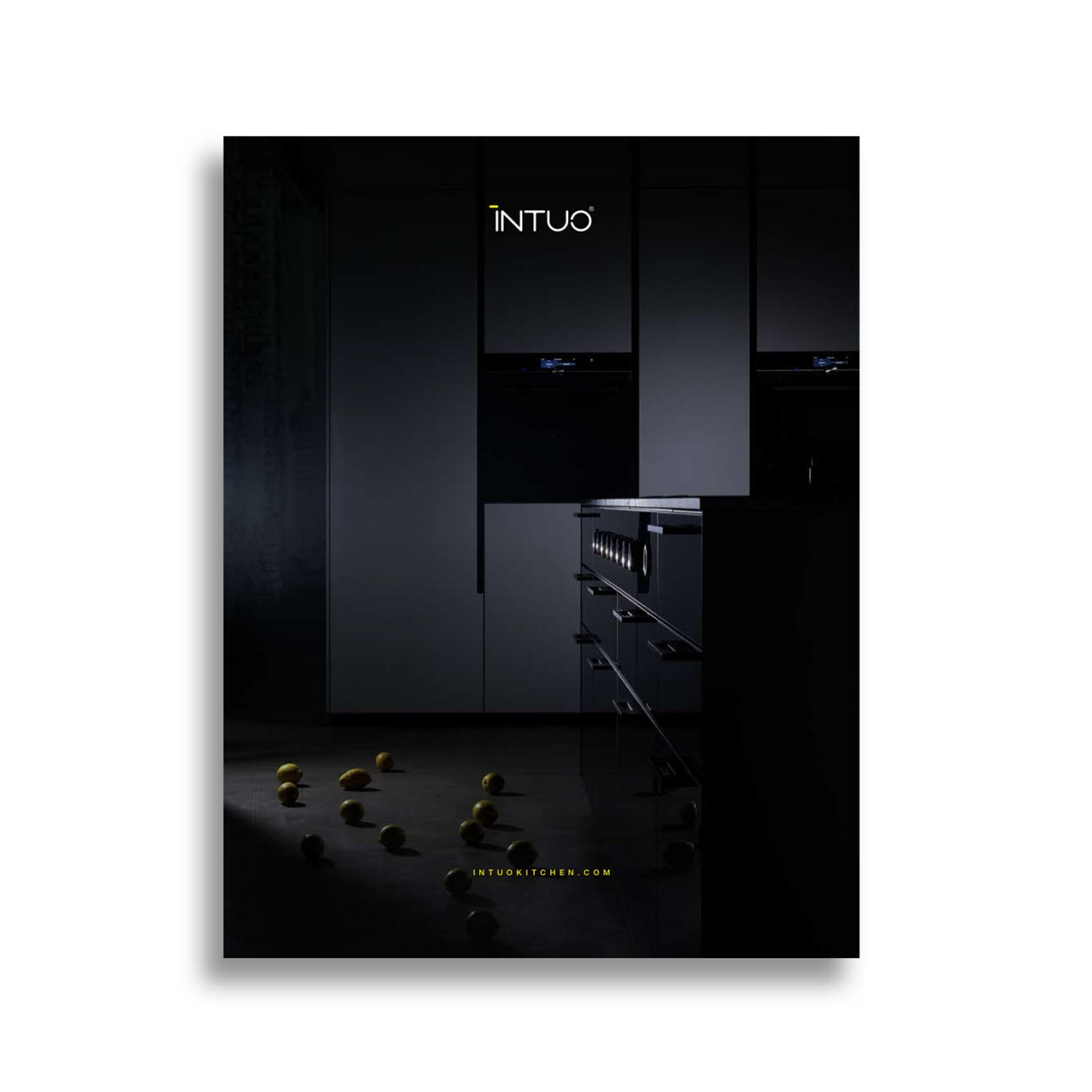 INTUO catalogue
